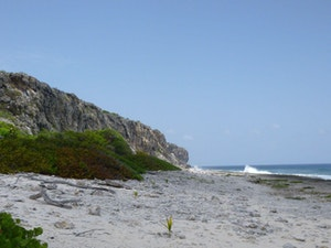 Cayman Brac Bluff from the ground