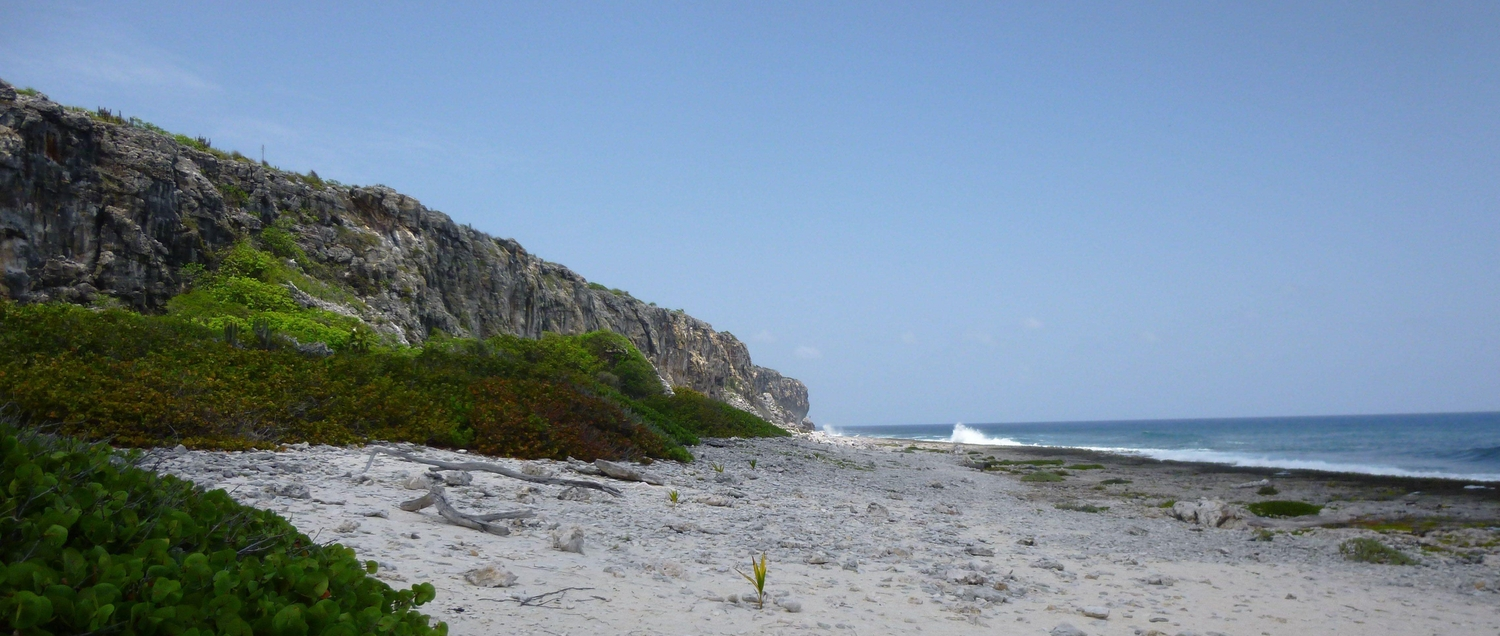 Cayman Brac Bluff from the ground