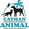 Cayman Animal Hospital Square logo