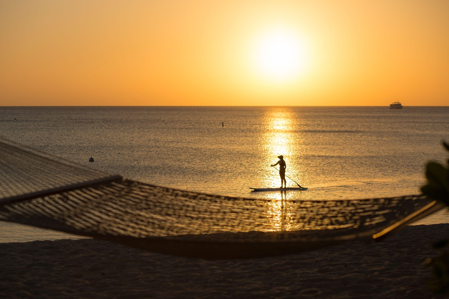 Hammock Sunset Paddle Board
