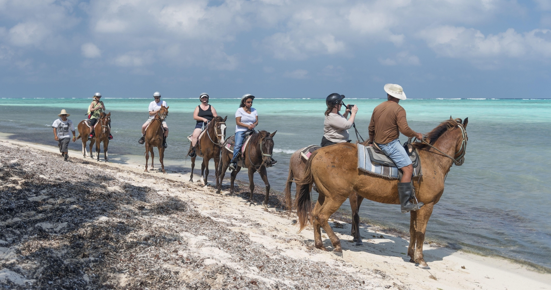 Horseback Riding Beach Cayman