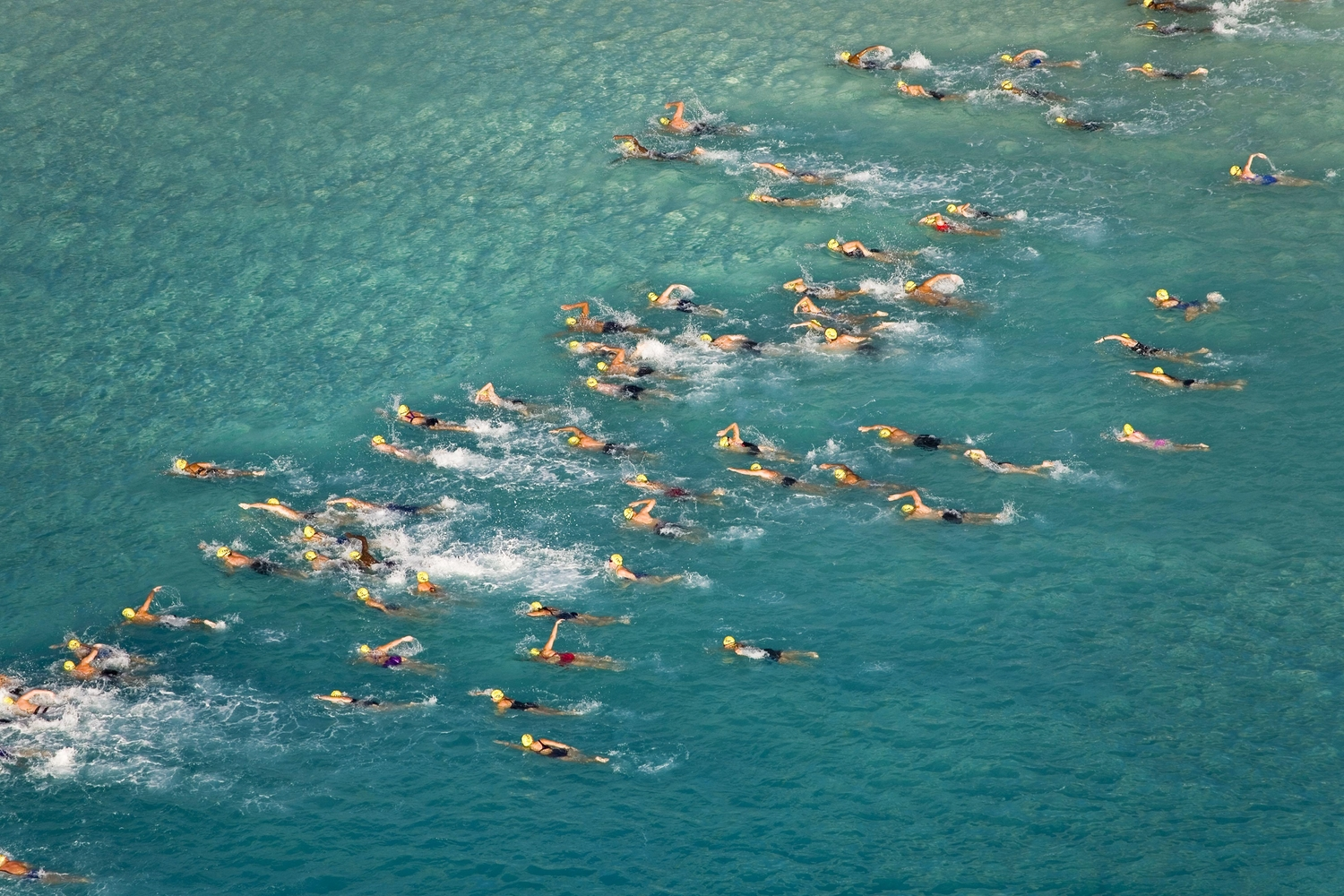 Large open water swimming race