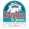 Pedro Logos 2021 Full Colour Copy