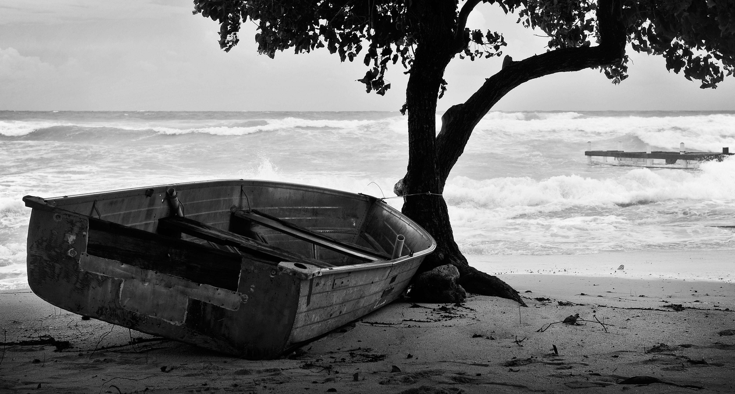 Black and white photo of a row boat on the beach under a tree