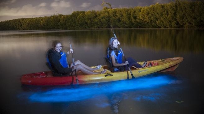 Two kayakers paddling through ioluminescence at night