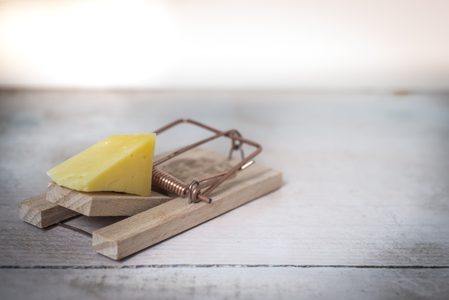Brown wooden mouse trap with cheese bait on top 633881
