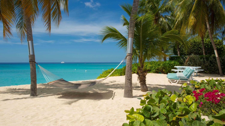 Cayman Islands beach hammock