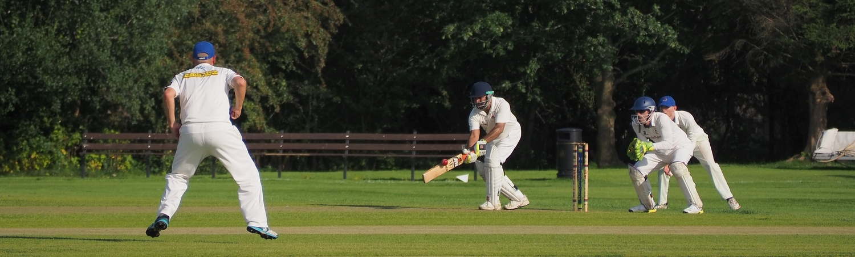 Cricket in the cayman islands hero image