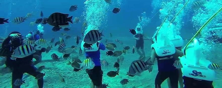 Group of people on an underwater snuba adventure
