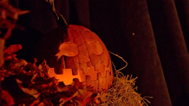 Jack o lantern set amidst autumnal display