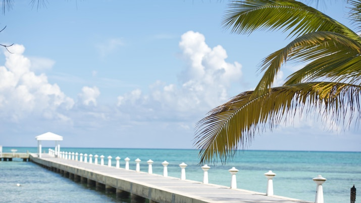 Rum point dock with palm tree on right of image