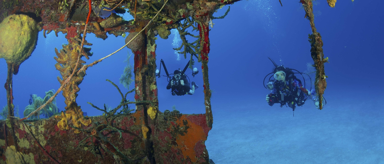 Two divers looking at coral through a shipwreck