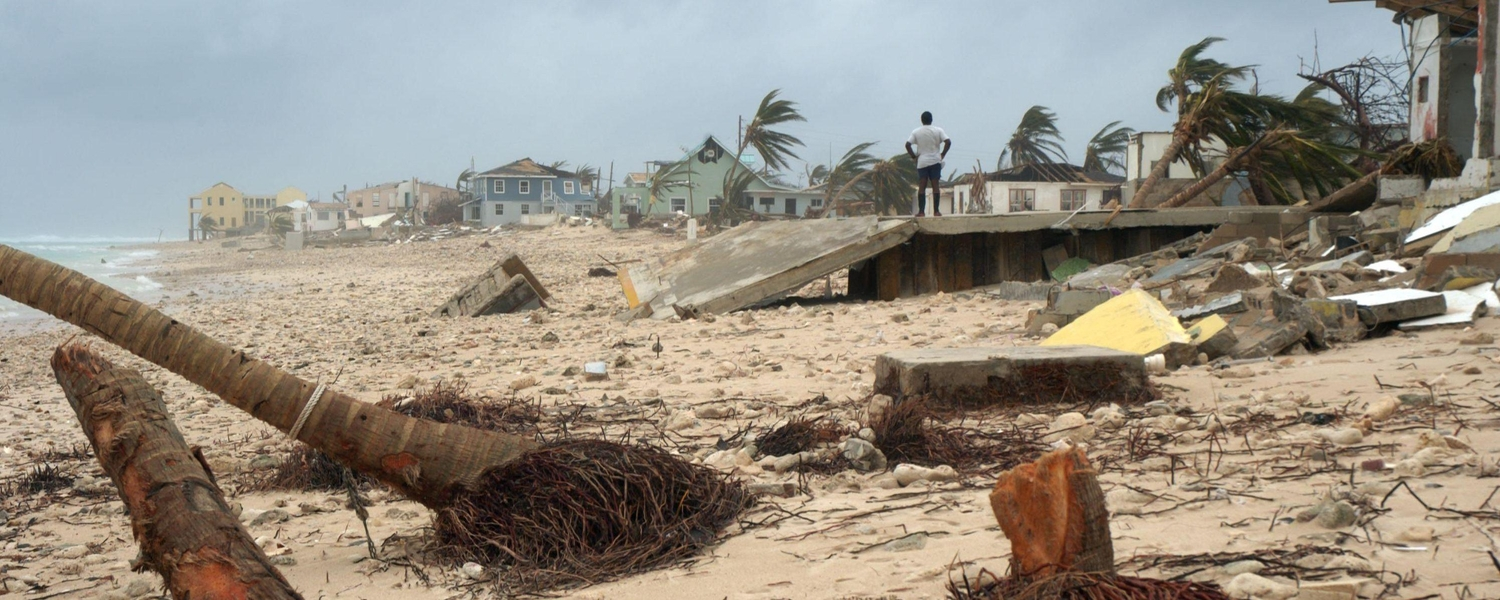 Uprooted trees and stormy seas along the beach from hurricane Ivan