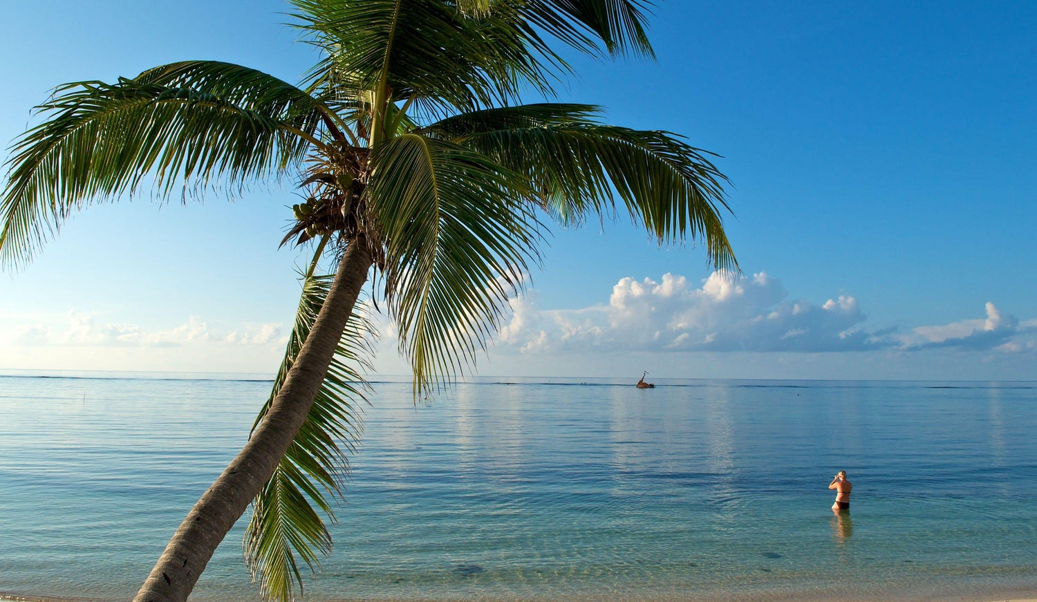 View of a shipwreck on an ocean calm as glass with a single palmtree and bather